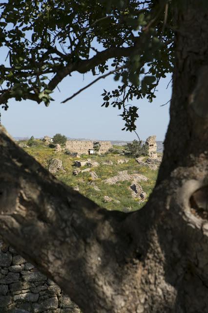 Area archeologica di Occhiolà