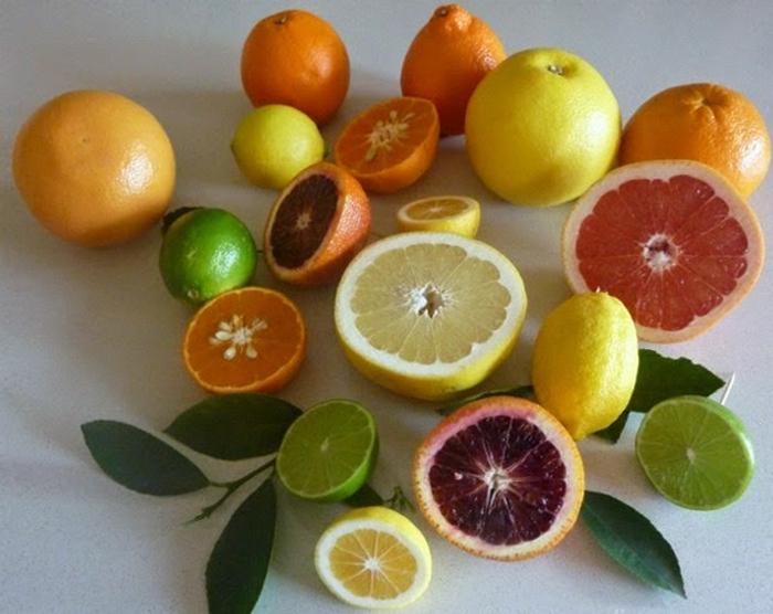 macam macam jenis jeruk, kumpulan macam jenis jeruk, jenis jenis jeruk nipis, jenis jeruk nipis, syarat tumbuh tanaman jeruk, kandungan jeruk, jenis jeruk tabulampot, jenis jeruk limau