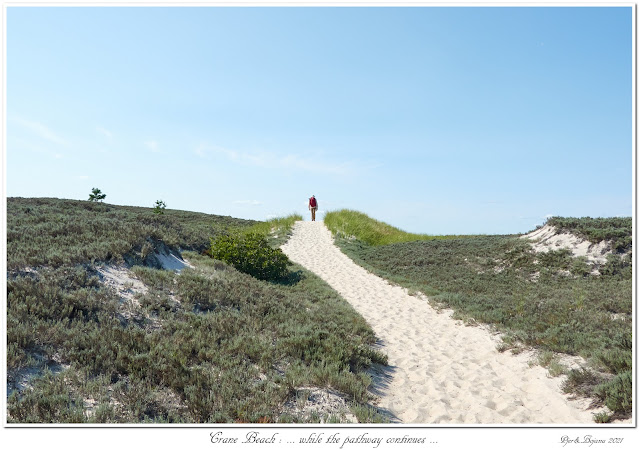 Crane Beach: ... while the pathway continues...