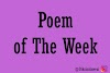 Poem of The Week #4 : Gather in Your Closure?