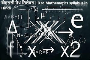 बीएससी मैथ सिलेबस | B.sc Mathematics syllabus in Hindi