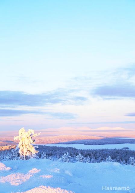 Särkitunturi talvella