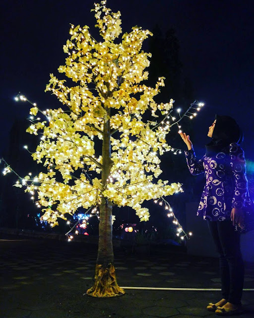 foto pohon lampion di taman pelangi
