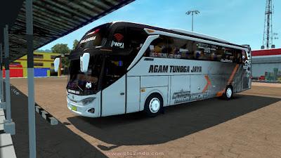 Skin Agam Tungga Jaya erlangga