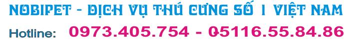 nhim-kieng-hamster-cho-canh-nobipet