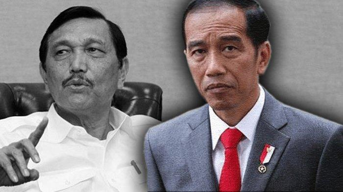 Minta Jokowi Pecat Luhut Usai Covid-19 Semakin Menggila, Saiful Anam: Luhut Mengarahkan ke Jurang Kegagalan, Kasihan Rakyat!