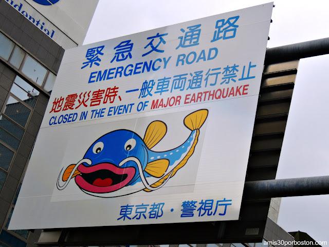 Carteles Informativos en Caso de Terremoto