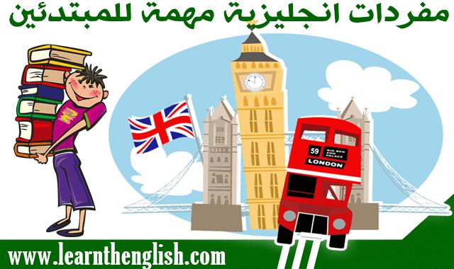 مفردات انجليزية مهمة للمبتدئين