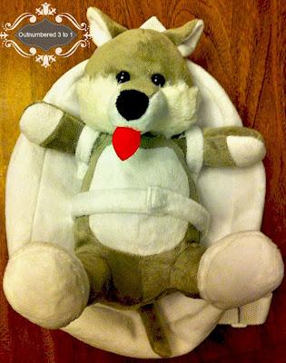 Tag Along Teddy