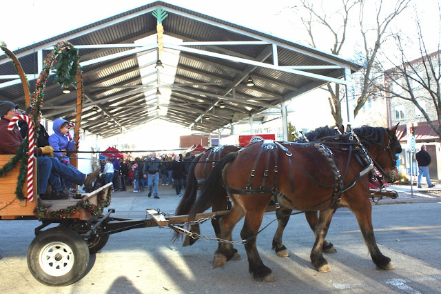 Horse drawn carriage carrying visitors past the local market at Stroll on State.