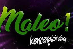 Frekuensi Terbaru Maleo Channel 2019 di Satelit Palapa D 113 E