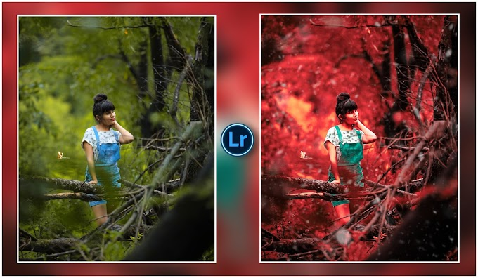 Red tone Presets Free download