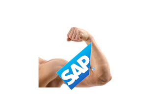 SAP Strong 2016 Results