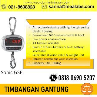 Crane Scale Sonic GSE