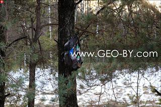 Мешок с дерьмом на дереве