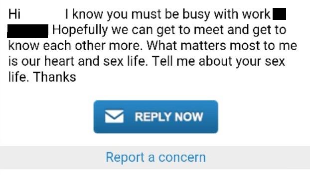 Hd Anybunny Porn