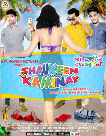 Poster Of Shaukeen Kaminay 2016 Hindi  300MB  720p HEVC Watch Online Free Download world4ufree.org