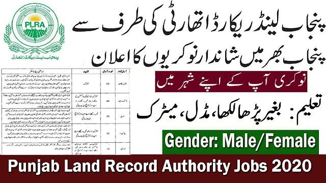 Punjab Land Record Authority Jobs 2020 Apply Now