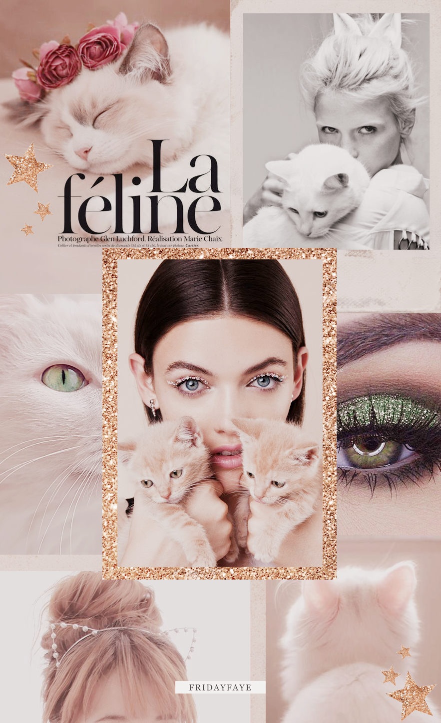 "A moodboard of cat related imagery with text ""La Feline"""