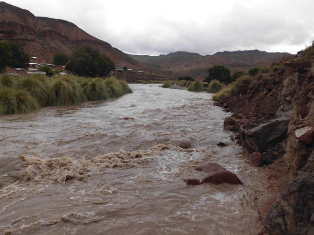 Der reißende Fluss. Auch Geröll ist für ihn kein Problem.