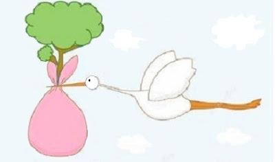 cicogna in volo poerta un albero