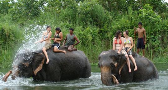 tour chitwan national park nepal