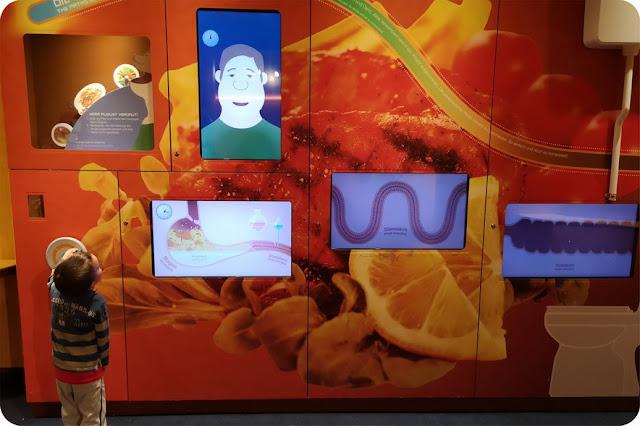 cosa vedere al museo della scienza di salisburgo