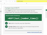 Menggunakan Fungsi Excel REPT Untuk Menggandakan Teks
