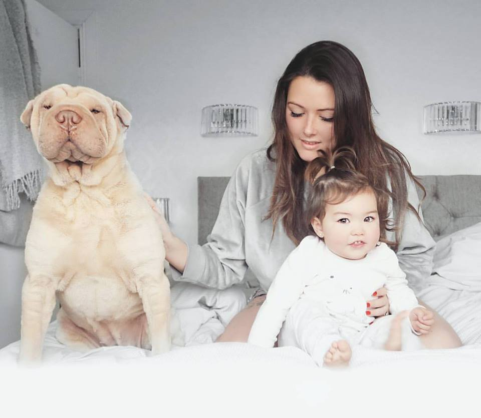 Mum baby and dog photos