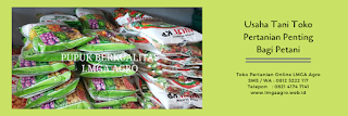 melon pertiwi, jual melon hibrida berkualitas, jual benih pertiwi, budidaya melon, toko pertanian, toko online, lmga agro