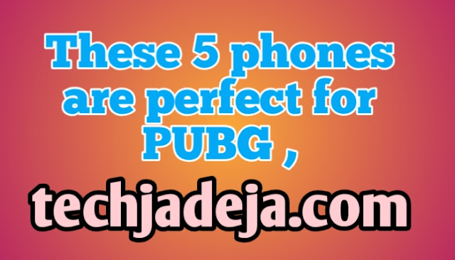 These 5 phones are perfect for PUBG ,