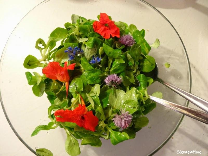 Le blog de clementine salade aux fleurs comestibles for Jardin aux fleurs