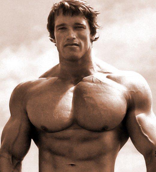 arnold schwarzenegger ab workout routine