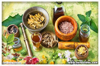 sejarah obat tradisional indonesia