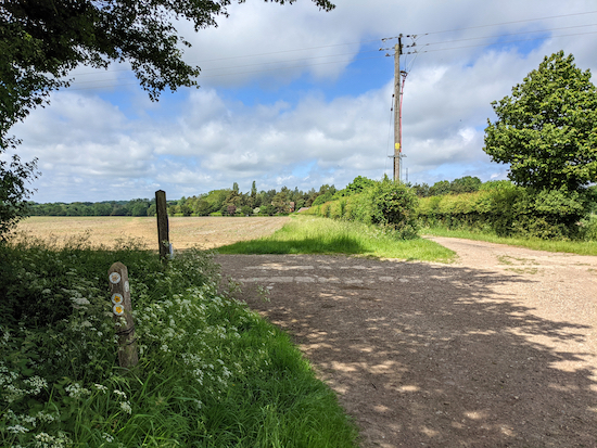 Take Barkway footpath 15 - the track with the telegraph pole