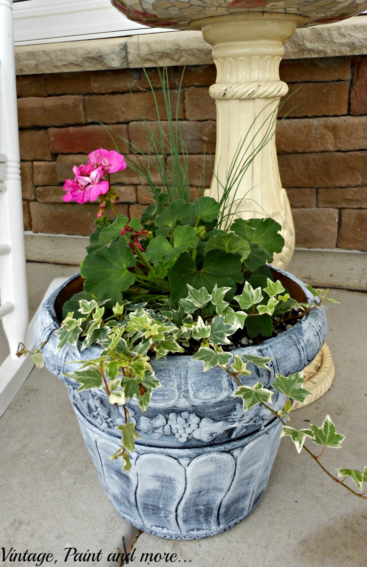 Vintage, Paint and more... geraniums and English Ivy used in a sun loving container garden