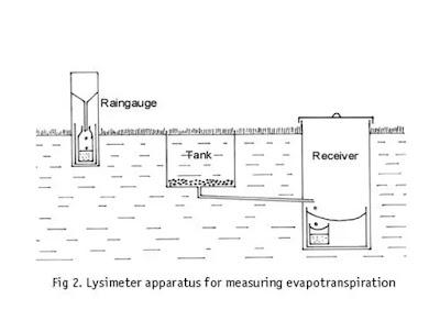 lysimeter apprutus