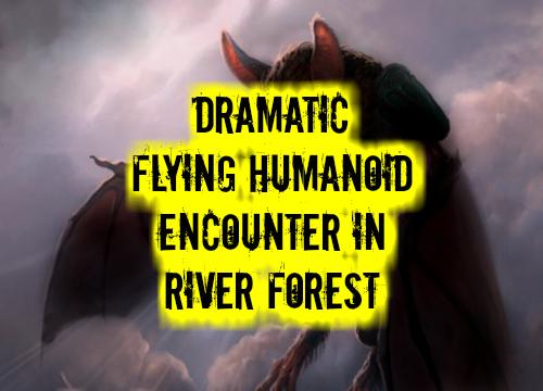 Flying humanoid encounters dating