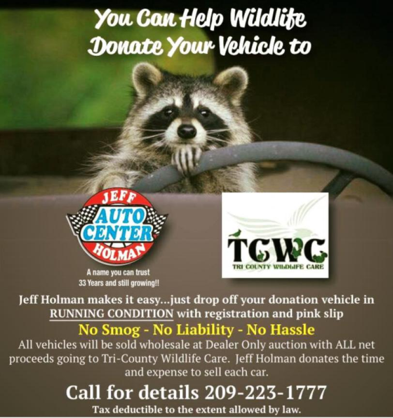 Donate your vehicle to TCWC