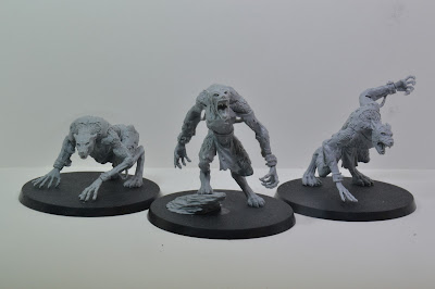 Age of Sigmar Skin Wolves