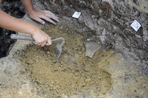 Szarmata település nyomait találták meg a régészek Hódmezővásárhely központjában