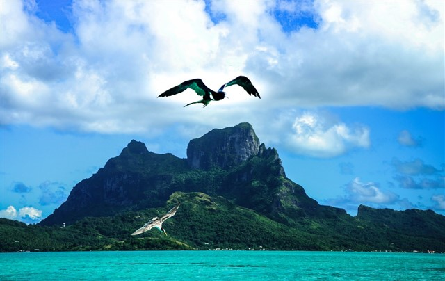 Bora Bora Vacation  Blue Lagoon Island - Tourinblog