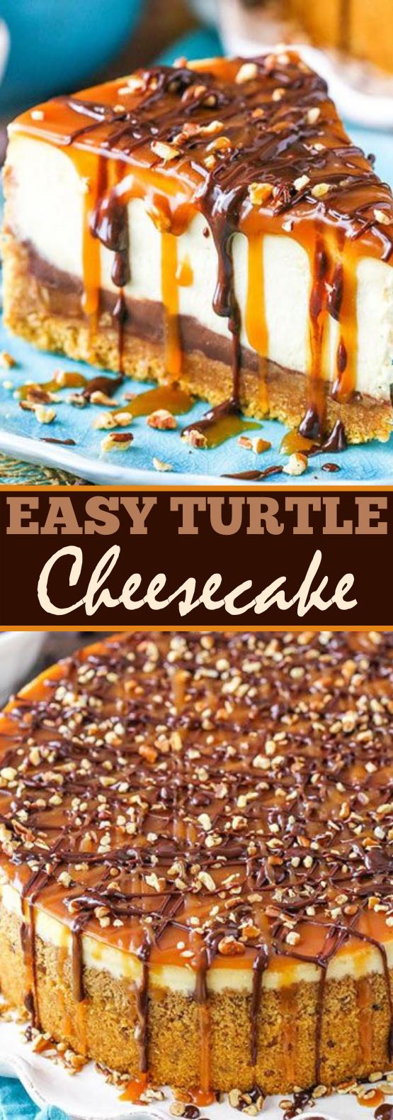Turtle Cheesecake #cake #desserts