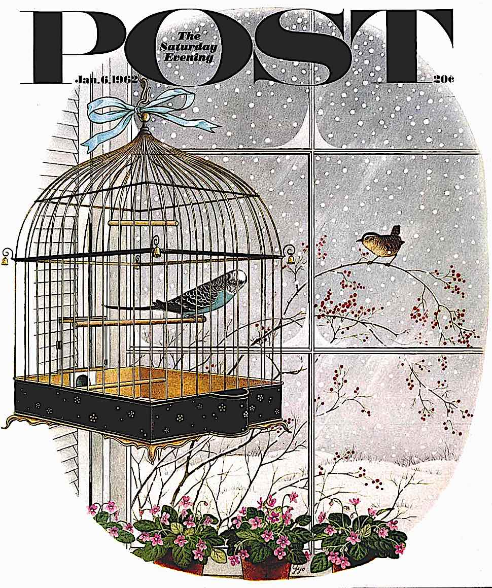 a Gyo Fujikawa 1962 illustration for The Saturday Evening Post, a caged indoor bird looks at an outdoor winter bird