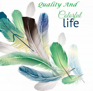 Improve Quality Of Life, Focus To Become Better