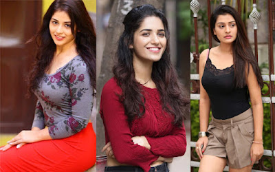 These-Actress-Are-Not-Gets-More-Offers-After-Getting-Success-Andhra-Talkies