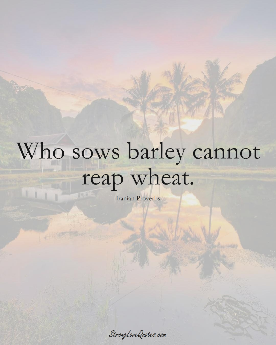 Who sows barley cannot reap wheat. (Iranian Sayings);  #MiddleEasternSayings