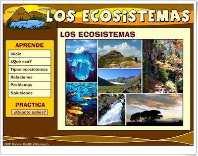 """""""Los ecosistemas"""" (Ciencias Naturales de Primaria)"""