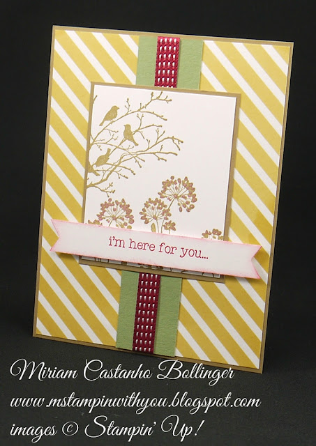 Miriam Castanho-Bollinger, #mstampinwithyou, stampin up, demonstrator, ppa, all occasions card, lullaby dsp, serene silhouettes, pedal pusher stamp set, banner triple punch, su