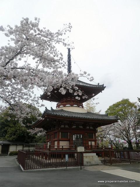 excursión y visita a Kawagoe desde Tokio